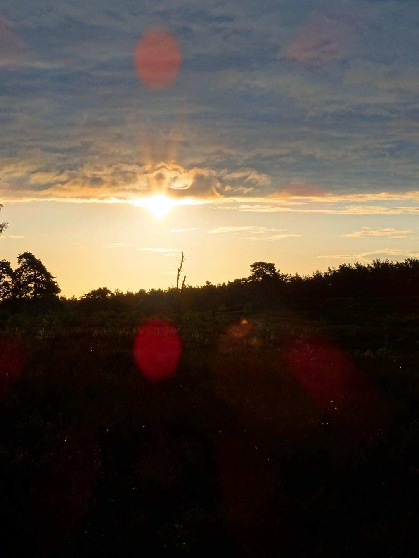 goldene Morgenstunde