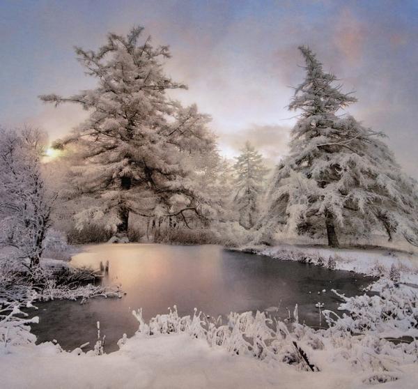 Ziemas pasaka
