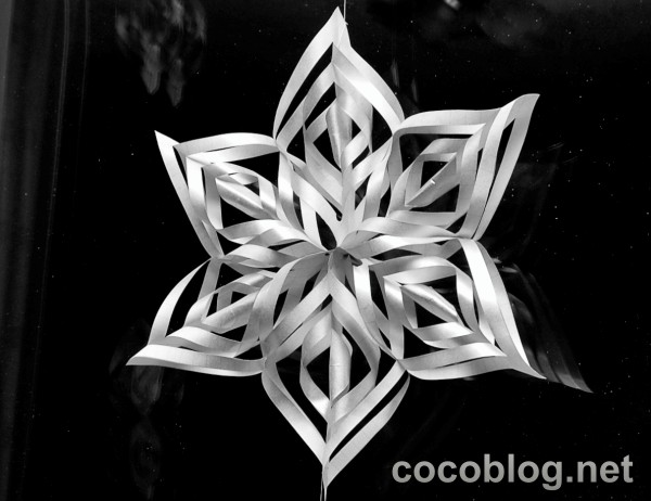 sniegparslinas-mana-loga-dejo