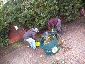 Tuesday 7th January 2020, Community Inclusion & Volunteering – gardening