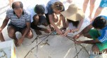 Fixing coral frames to the new coral nursery structure