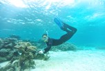 Dr. Jillian removing a small net from the house reef at Coco Bodu Hithi