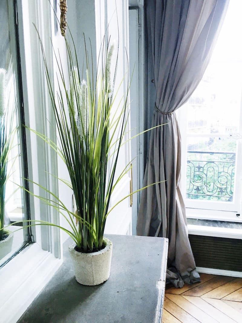 Paris Apartment Green Plant Mantle
