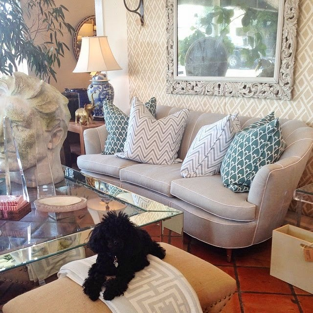 COCOCOZY pillows and throw at Mecox Gardens West Palm Beach