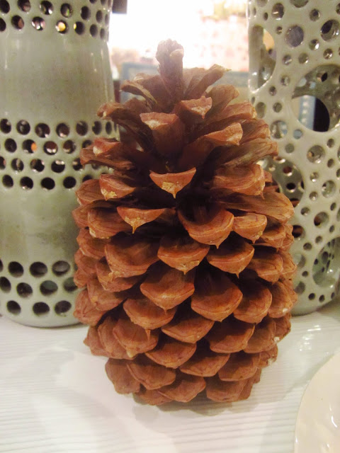 pine cone on table as a center piece