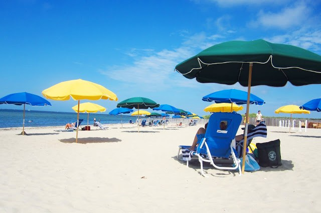 beach littered with blue, dark green and yellow umbrellas