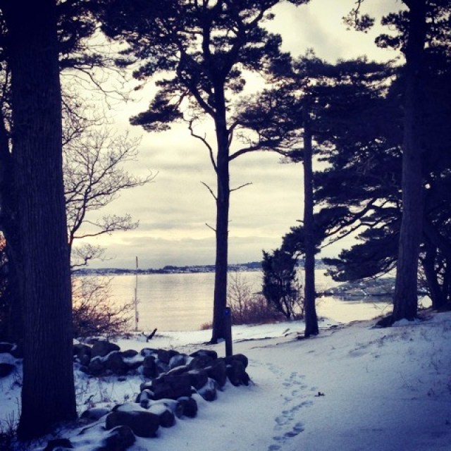 Swedish coastline in winter with dark trees, footprints in stone and still water