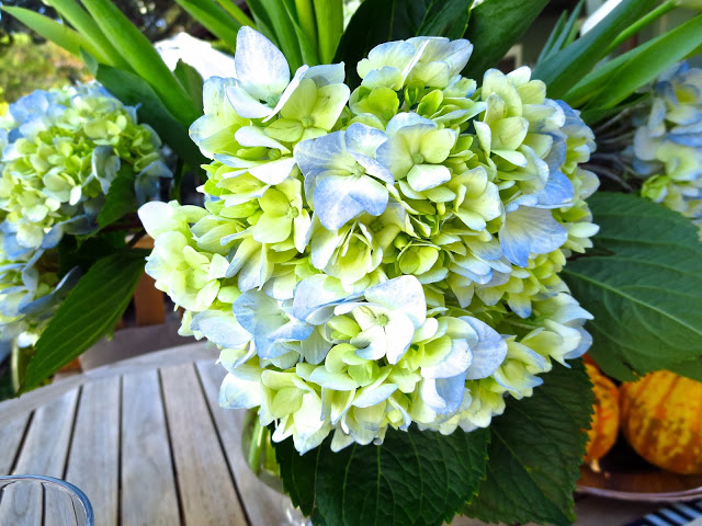 Hydrangea and tulip centerpiece for a casual fall outdoor tea