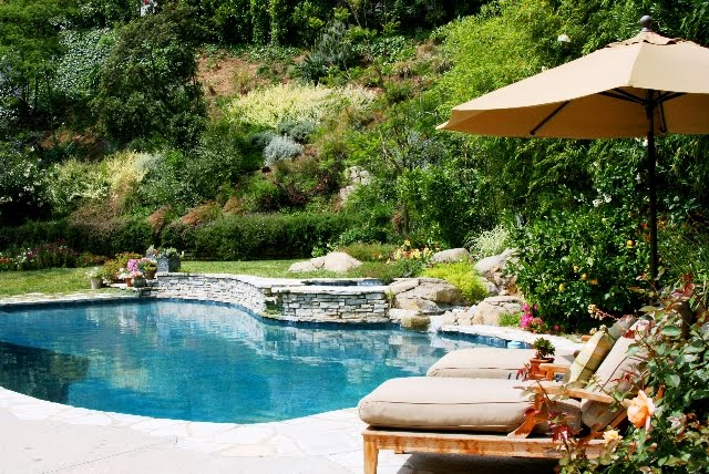 Linda Grasso of Shesez's California backyard pool