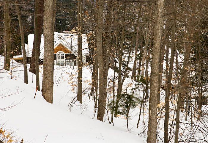 Cabin in the woods in winter