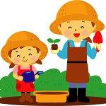家庭菜園用に雑草で堆肥を作ろう!超簡単な方法はコレ!