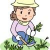 抜いた雑草の処理方法!雑草を復活させない為の方法!