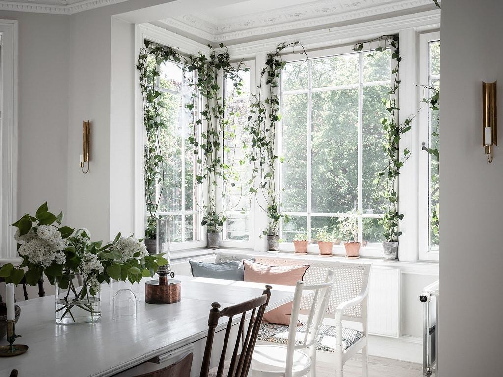 hangplanten bij het raam
