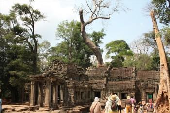 ■タブローム遺跡 歴史的視点より、自然的視点で世界遺産を巡る。
