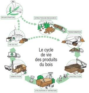 cycle de vie dui bois comme matériaux de construction