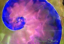 écoline réalisée par Véronique Staffe en s'inspirant de la spirale du nombre d'or. Cette écoline rappelle un embryon