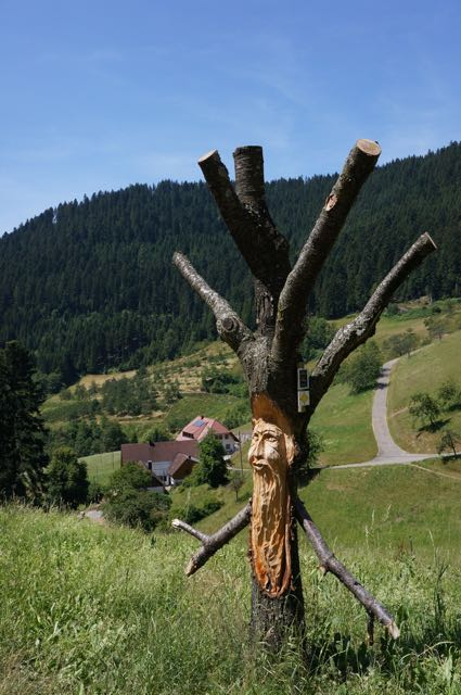 Schwarzwald, Germany. Photo: Eeva Routio.