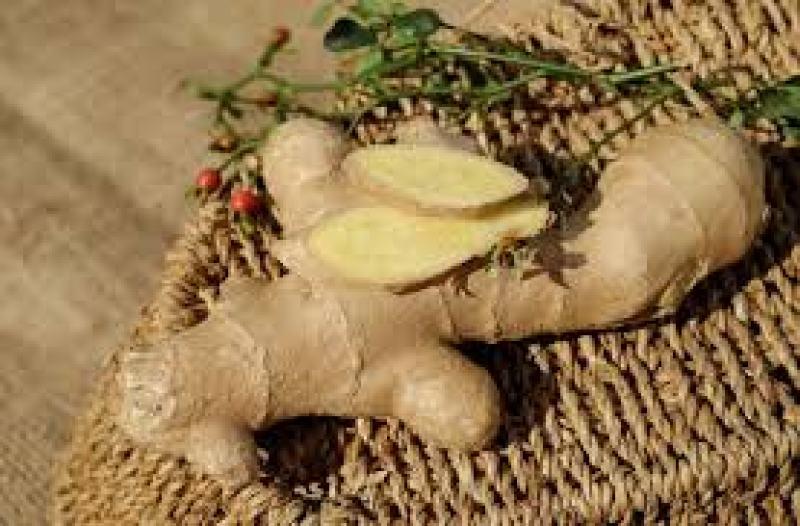 alkaline diet ginger