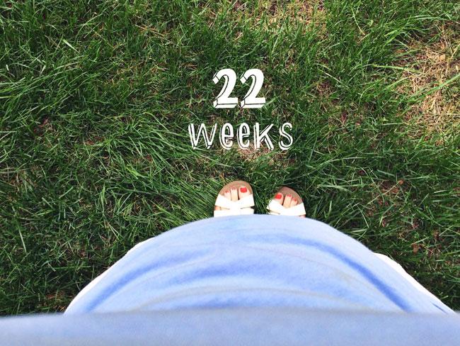 22-weeks