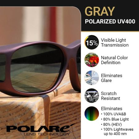 Polarized General Purpose Gray Lens