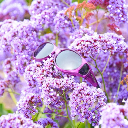 Cocoons Fitover Sunglasses in Amethyst in flowers