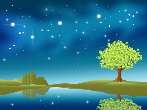 湖面に映る星と木