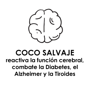 beneficios COCO SALVAJE Cerebro