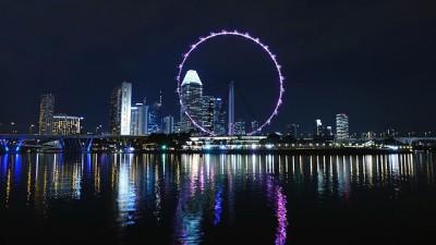 カップル旅行夜景スポット、シンガポールフライヤー