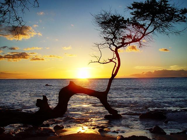 カップル旅行でハワイ、おすすめのロマンチックスポット