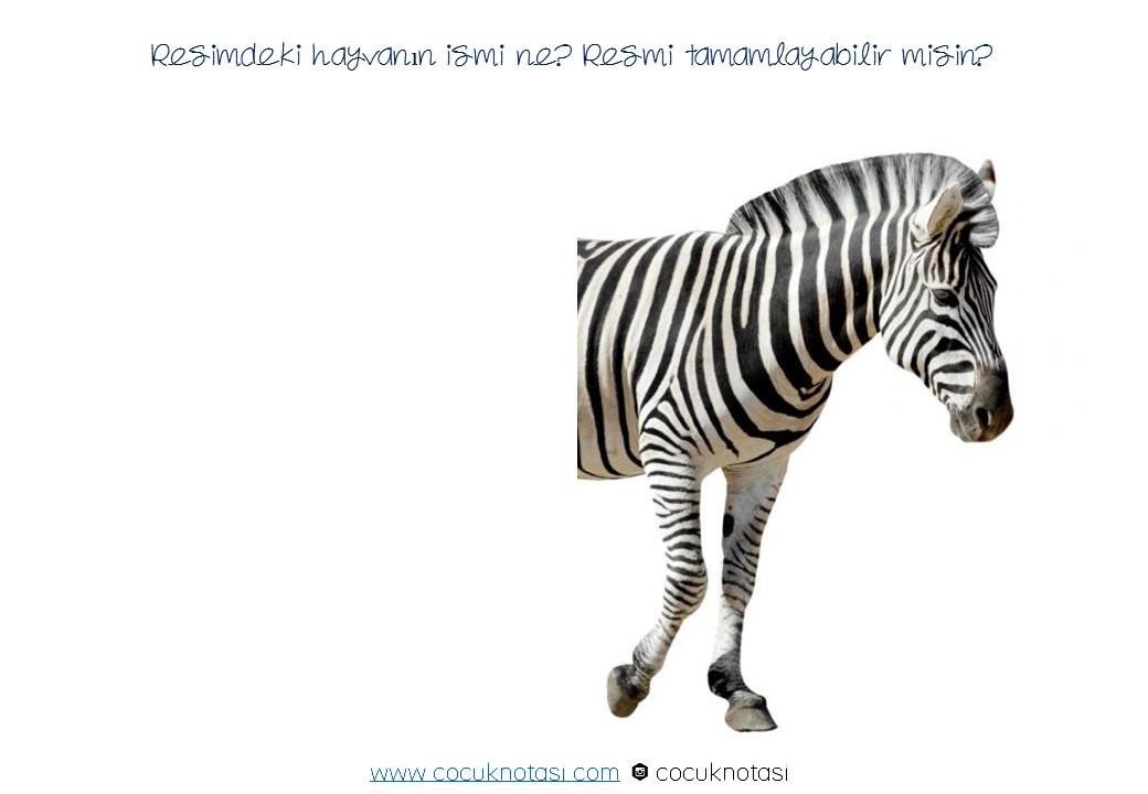 Resmi Tamamla- Hayvanlar