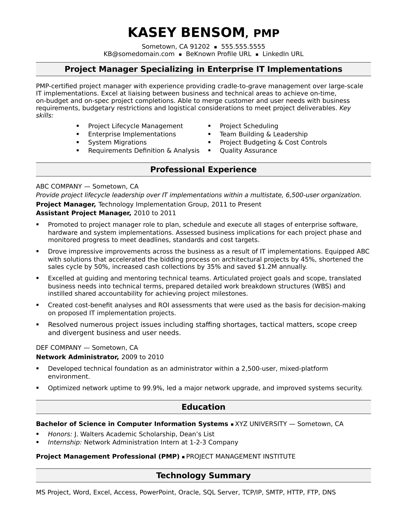 Resume Summary Examples It Project Manager