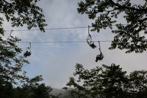 Forest SightSeeing Cable Car