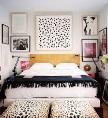 co quarto pb animal print