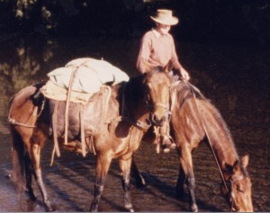 Pack Horse and Cowboy