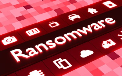 CEO Dr. Anita D'Amico on Ransomware