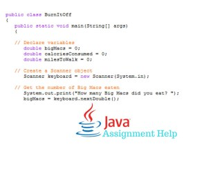 Where students can find help with Java assignments if they are beginners in JavaScript