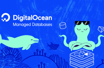 install-configure-mysql-database-digitalocean