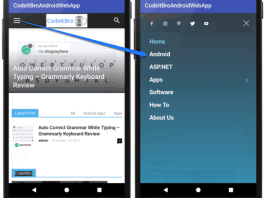 enabling javascript in Android webview example project