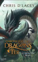 Alors que la querelle entre les Homs et les dragons continue, Ren devient le premier de son espèce à être accepté parmi les dragons. Mais au fur et à mesure qu'il développe et apprend à maîtriser leurs pouvoirs, la suspicion des reptiles grandit à son égard. La tension augmente avec la menace du dragon noir et l'arrivée d'un inconnu proposant son aide aux Homs contre les dragons.
