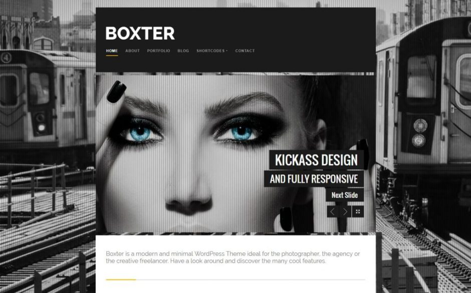 boxter-wordpress-theme-demo-light-just-another-udthemes-demo-compressed
