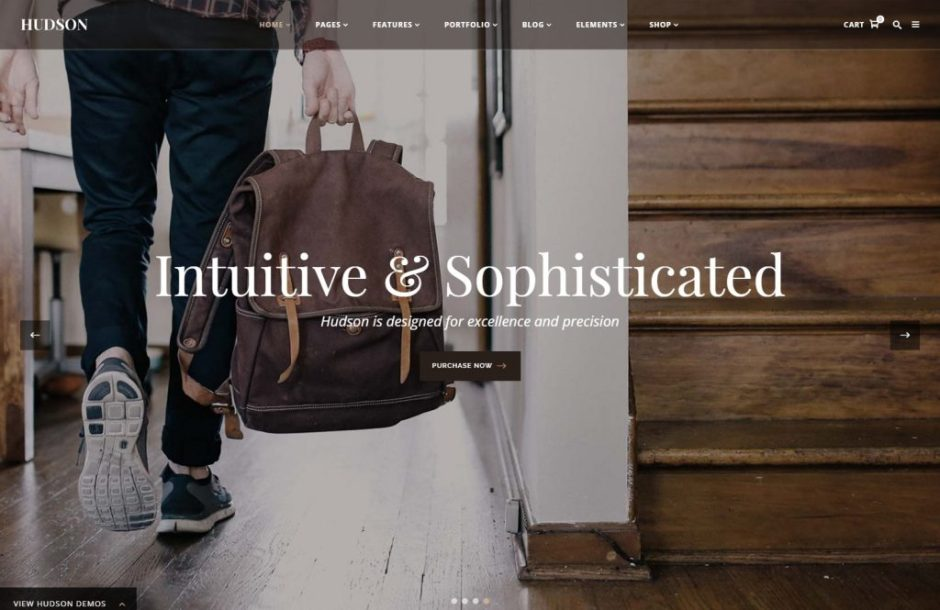 hudson-personal-professional-advanced-theme-compressed