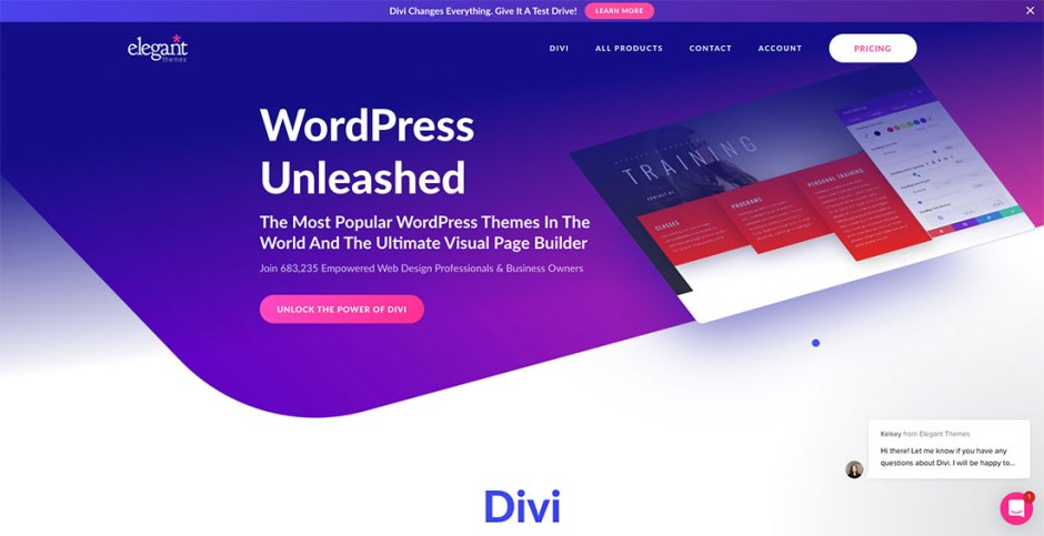 DIvi Theme Review by Codeless