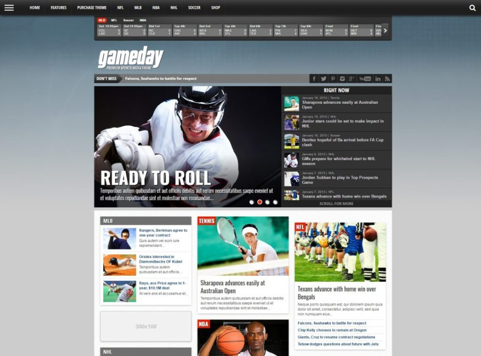 15+ Awesome Sports/Soccer WordPress Themes - Premium WordPress ...