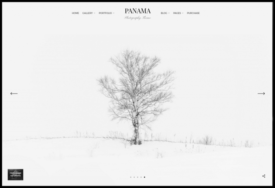 screenshot-panama.bwdesk.com-2017-04-12-15-23-20 (1)
