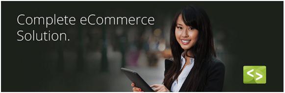 WordPress eCommerce Plugins Google Docs (2)