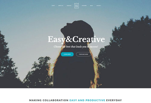 Regn Digital Agency WordPress Theme