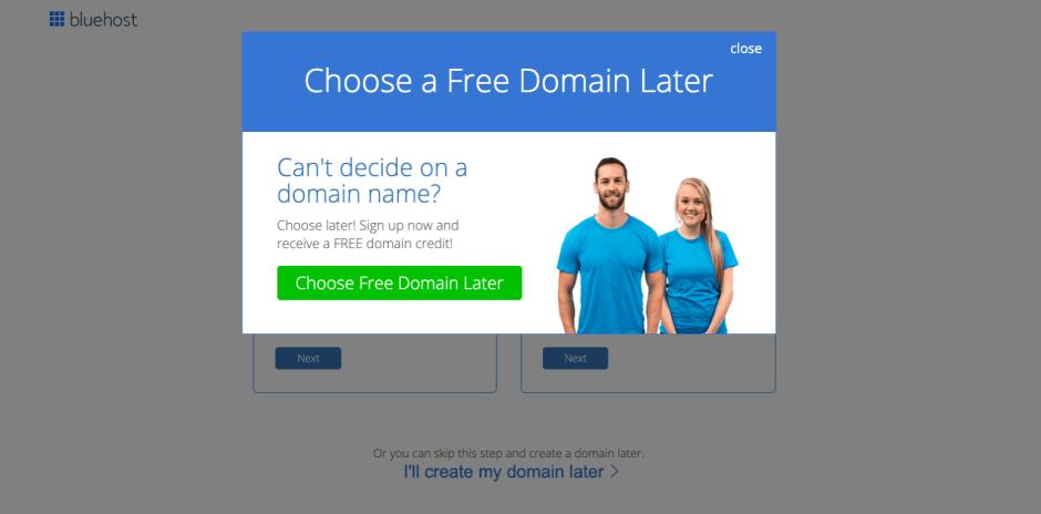 Bluehost - Choose Blog Domain