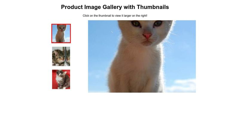 Product Image Gallery with Thumbnails