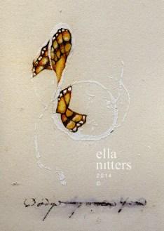 papillon fantôme 4