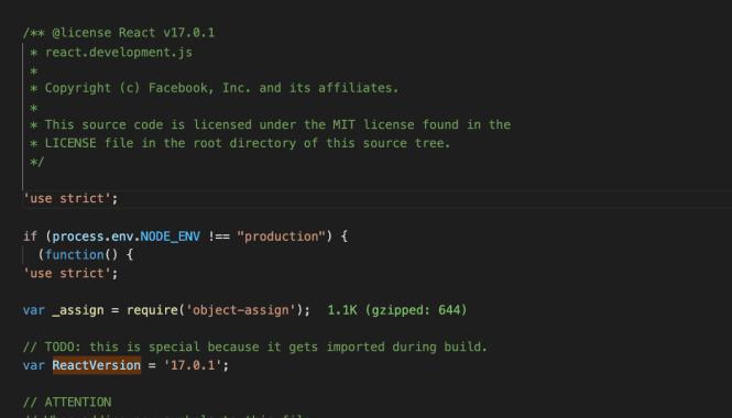 ScreensCheck React Version in node_modules
